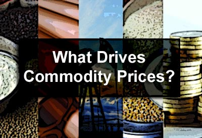 What Drives Commodity Prices?